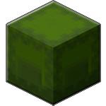 Зеленый шалкеровый ящик в Майнкрафте